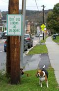 09282011-tour_bus_sign