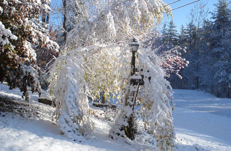 Snow-first storm of season  10 27 2011 5