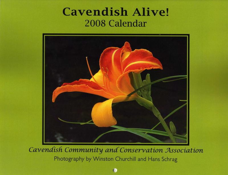 Cavendish_2008_calendar_3