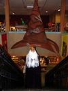 Dumbledore_the_sorting_hat_at_north
