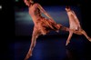 Sover_cherylyn_lavagnino_dance_co_2
